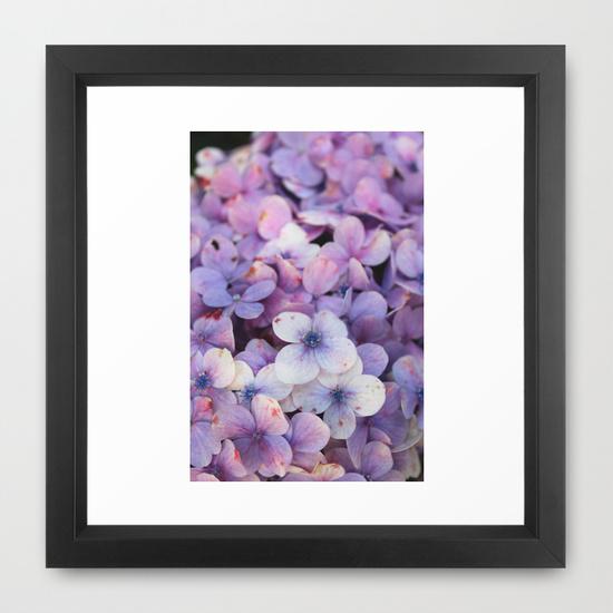 Framed art print- hortensia