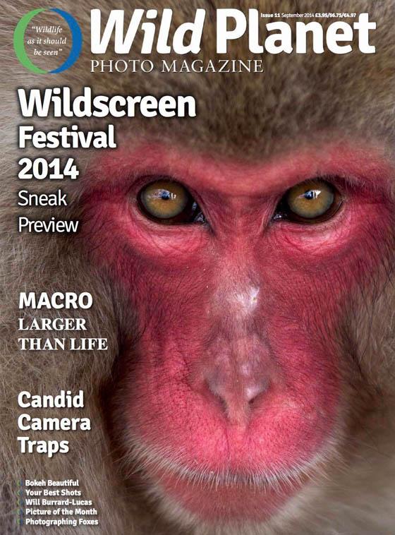 WPM cover