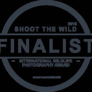 Shoot the Frame finalist 2015